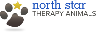 north star therapy